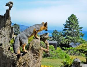 Gray Fox on a tree stump by Siegfried Matull