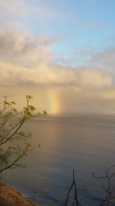 Sea Rainbow by Nancy Padgett