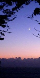 Friday's crescent moon by Cathleen Crosby