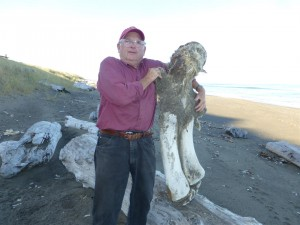 Don Phillips with a Whale bone by Mel Smith (Large)