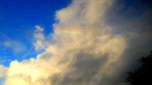 Fire Rainbow by Gary Levenson-Palmer