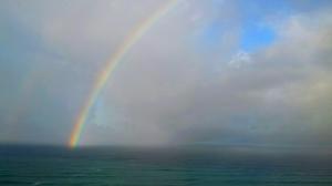 Rainbow by Gary Levenson-Palmer