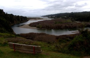 Gualala River Estuary in Bud by Robert Scarola