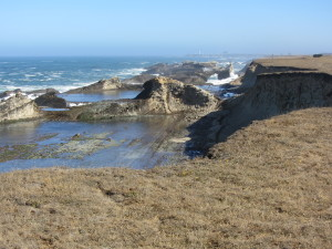 Southern portion of the PA-Stornetta Lands at low tide by Terry Pfardresher