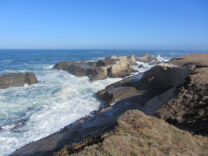 The rocky shoreline of the Point Arena-Stornetta Lands by Terry Pfardresher