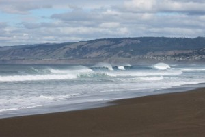 Waves at Manchester Beach by Beth Petit