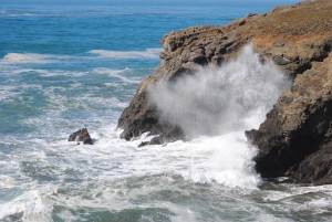 Blowhole 3 by Jeanne Jackson (Large)