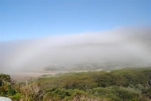 Fogbow 8.27.13 by Jeanne Jackson (Medium)