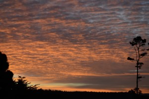 Friday morning's beautiful sunrise by Don Spear