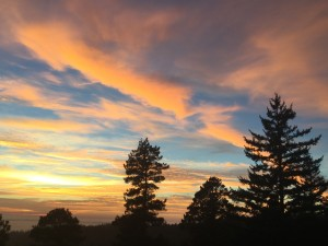 Sunset 1 by Jeanne Jackson