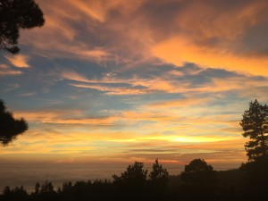 Sunset 2 by Jeanne Jackson