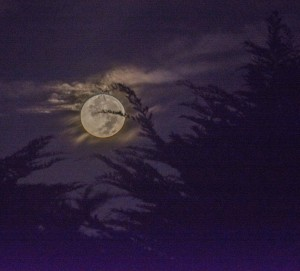 The setting Super Moon 9-27-15 by Paul Brewer