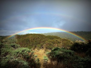 Double Rainbow by Beth Kattleman (Large)