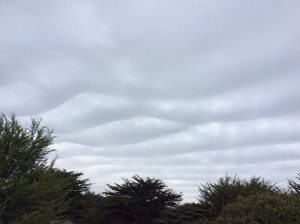 Unusual clouds by Shirley Mitchell