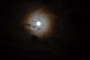 Feb. 23 Full Moon by Rozann Grunig