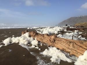 Sea Foam at Mancheser Beach by Dave Shpak