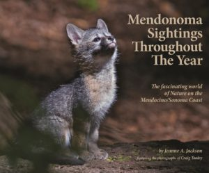 Book Cover - Mendonoma Sightings Throughout the Year (Large)