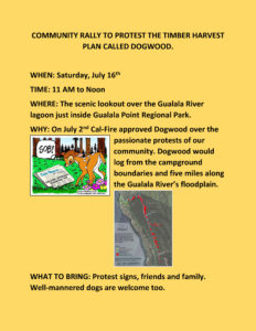 COMMUNITY RALLY TO PROTEST THE TIMBER HARVEST PLAN CALLED DOGWOOD - yellow!