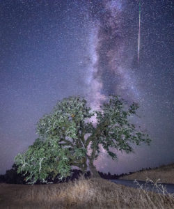 Perseid Meteor Shower and the Milky Way by Paul Kozal