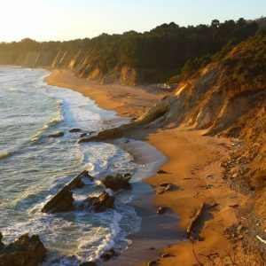 our-beautiful-coastline-by-karen-wilder