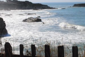 Pacific Ocean seen from Gualala Point Park by jeanne Jackson